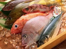 manfaat ikan bagi ibu hamil